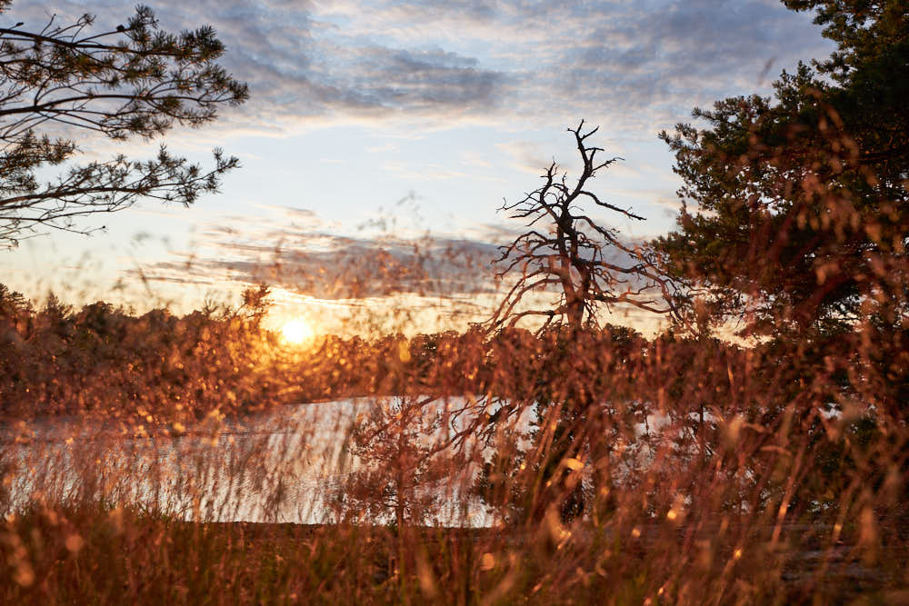 Schärenabend, Naturfotografie von olbor Oliver Borchert aus Schwerin