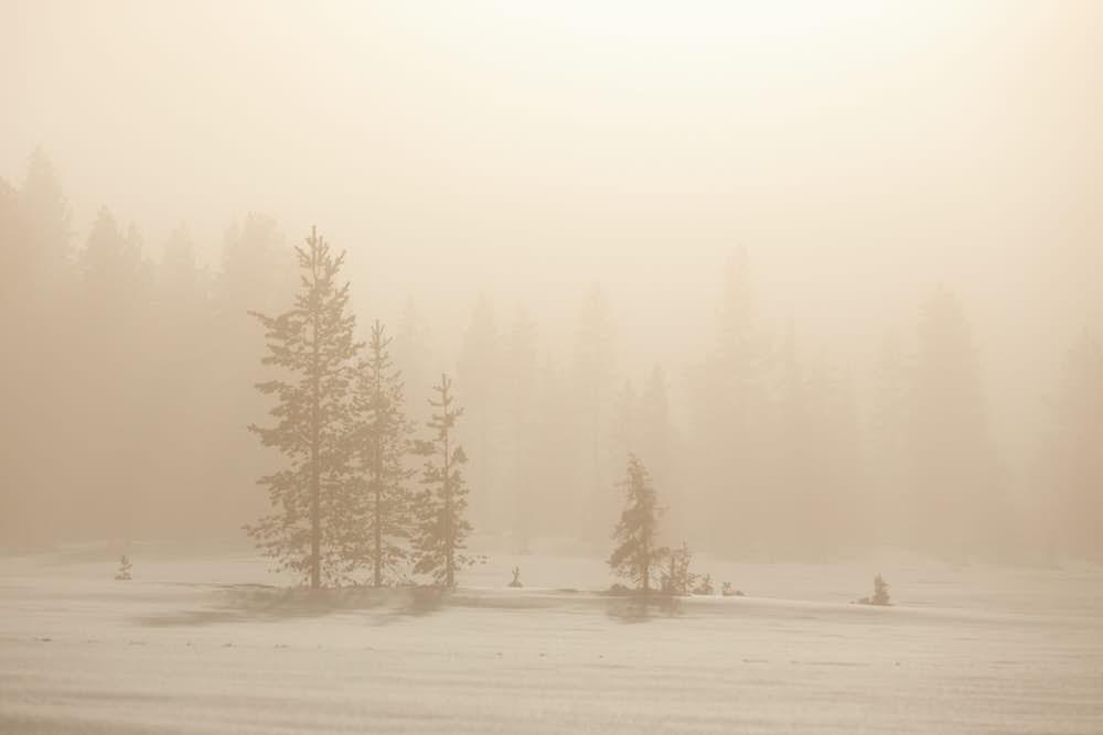 Winterlandschaft in Finnland, Lappland, Naturfotografie von olbor Oliver Borchert aus Schwerin