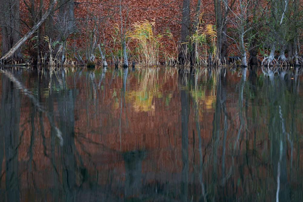 See im Herbst, Naturfotografie von olbor Oliver Borchert aus Schwerin