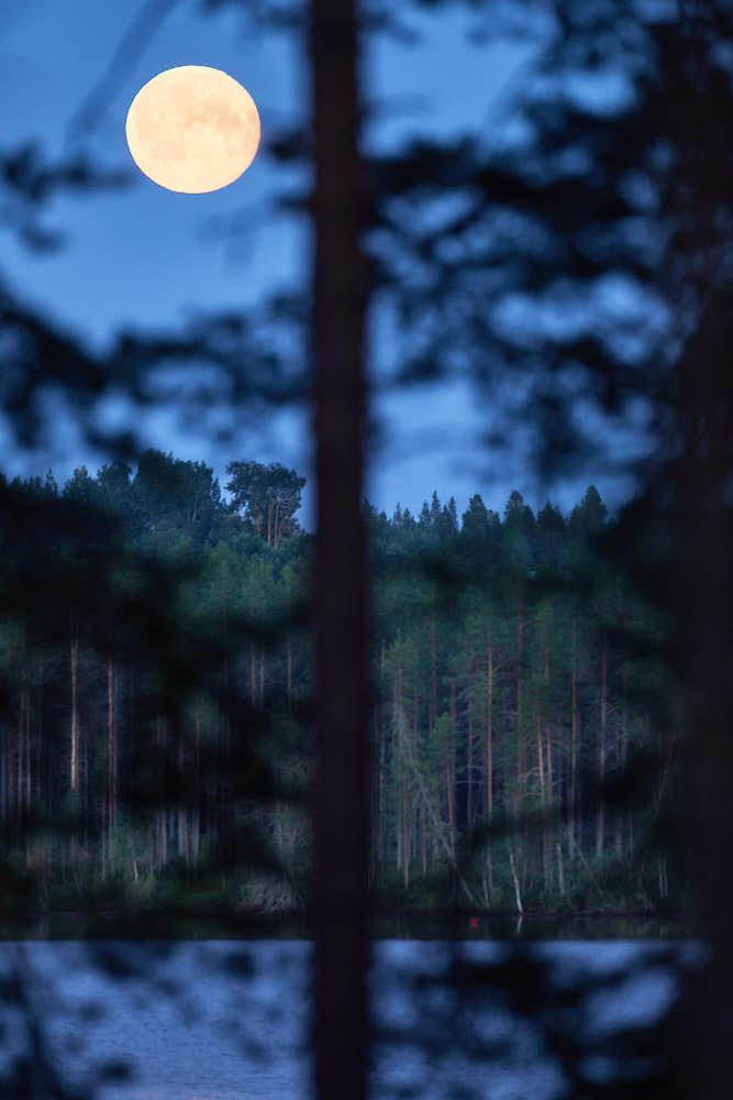Vollmond, Kuusamo, Naturfotografie von olbor Oliver Borchert aus Schwerin