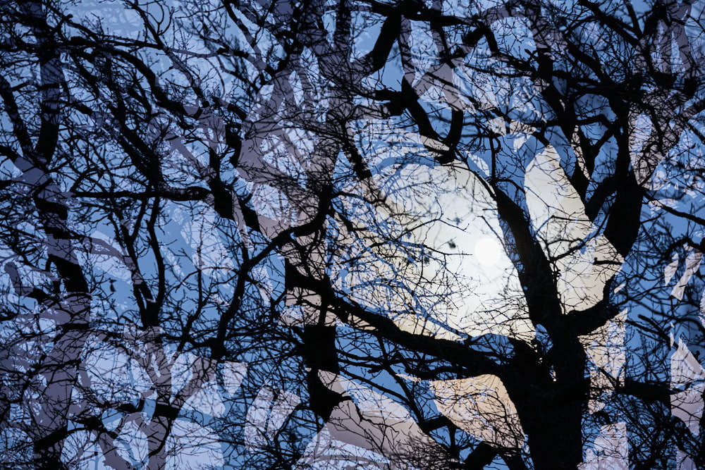 Vollmond, Naturfotografie von olbor Oliver Borchert aus Schwerin