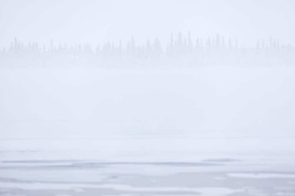 Winter, Naturfotografie von olbor Oliver Borchert aus Schwerin
