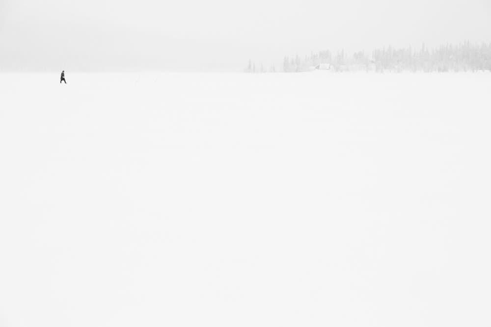 Finnland, Naturfotografie von olbor Oliver Borchert aus Schwerin