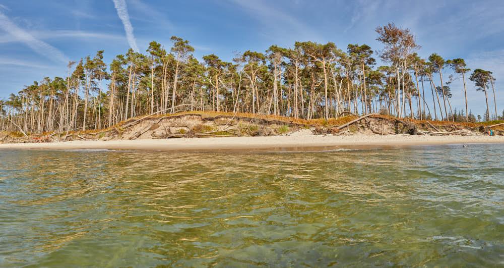 Darss, Weststrand, Naturfotografie von olbor Oliver Borchert aus Schwerin
